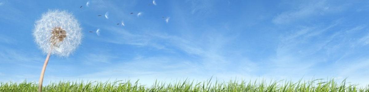 banner_air_freshening